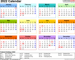 Download Template 8: 2022 Calendar for Microsoft Word (.docx file), landscape, 1 page, year at a glance, multi-colored