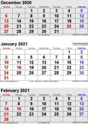 3 months calendar December 2020 / January/February 2021 in portrait format