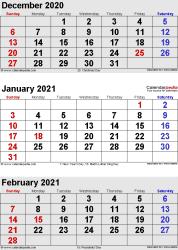 3 months calendar December 2020/ January/February2021 in portrait format