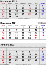 three month calendar November/December 2021& January 2022 in portrait orientation, available as printable templates for Word, Excel and PDF