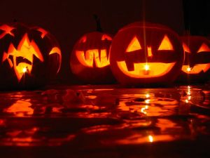 Carved pumpkins on Halloween. Photo: flickr.com/photos/hanna_horwarth/